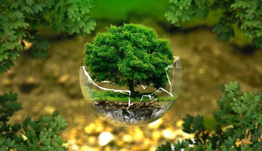 生態学(Ecology)の英単語・熟語まとめ 画像と意味