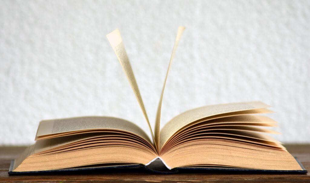 【TED】辞書の中身を決めるのは誰でしょう 難易度・専門性【4/10】